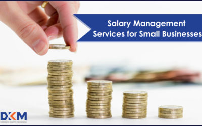 Salary Management Services for Small Businesses